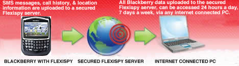 http://www.espion-gsm.com/wp-content/uploads/2009/10/how-blackberry-spy-works.jpg